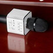 Micro Karaoke Tosing Q9-4