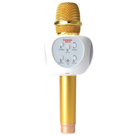 mic-kem-loa-zbx-66-4